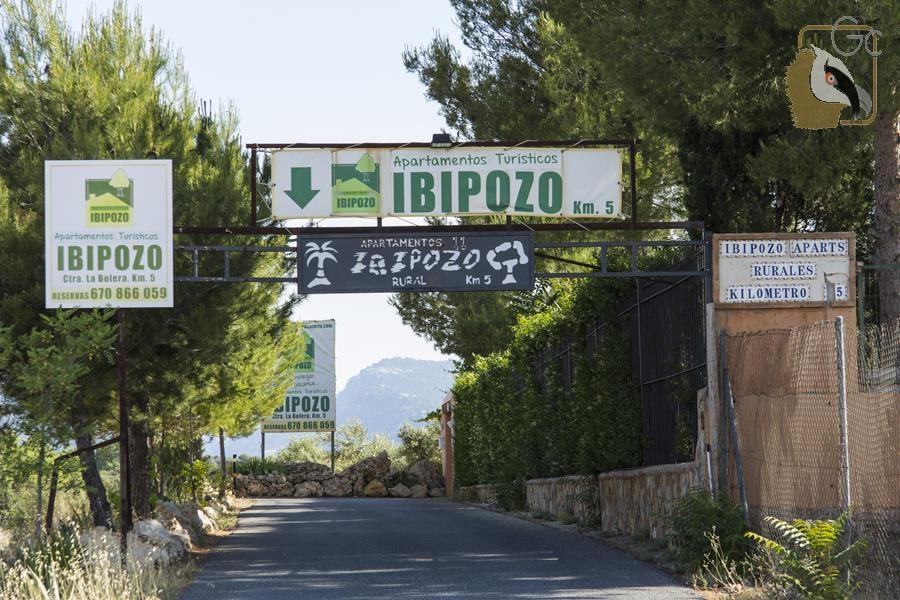 Apartamentos Rurales Ibipozo (Pozo Alcón)